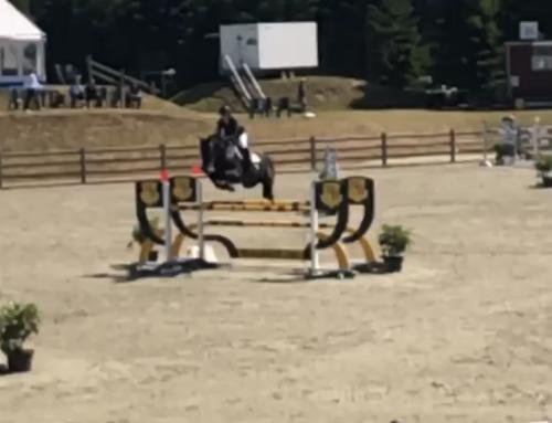 S.E. Estelle med fantastiske resultater på Bækgaarden Horse Festival 2019